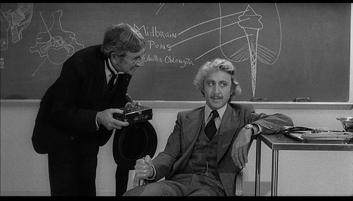Young Frankenstein